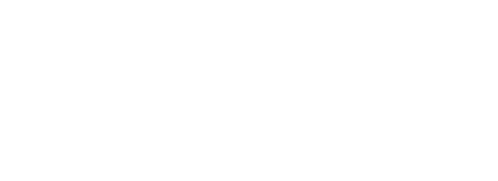 Danklefs Group